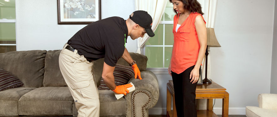 Charleston, SC carpet upholstery cleaning