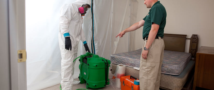 Charleston, SC mold removal process